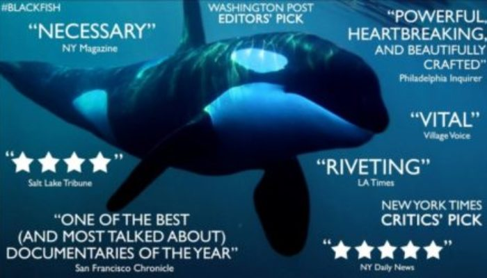 BLACKFISH Family Movie Review