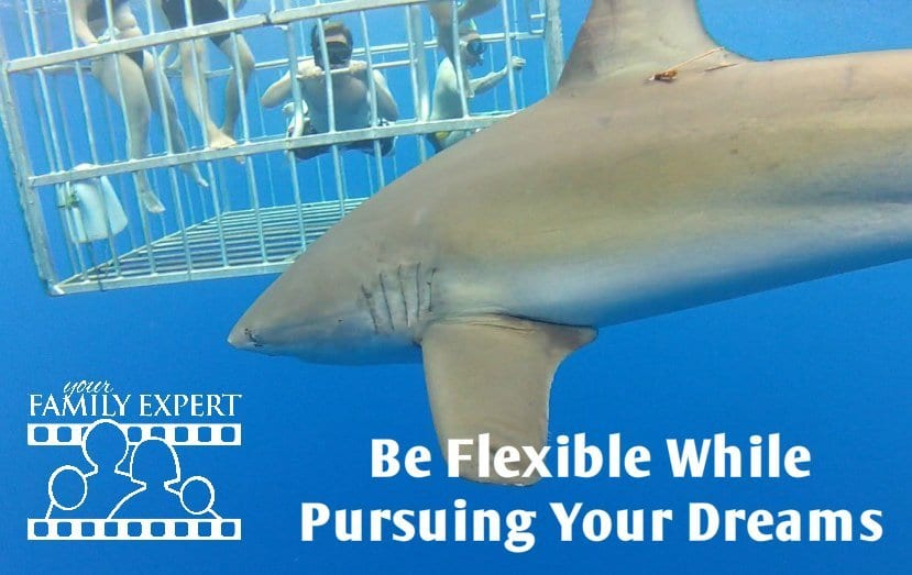 be flexible while pursuing your dreams